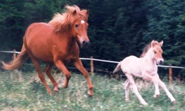 1998-prinsessa2-1